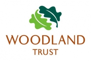 Maydencoft appointed as Consultants on the Ancient Woodland Restoration Panel