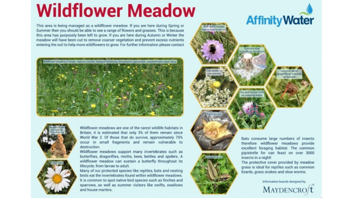 Wildflower Information Boards: Affinity Water
