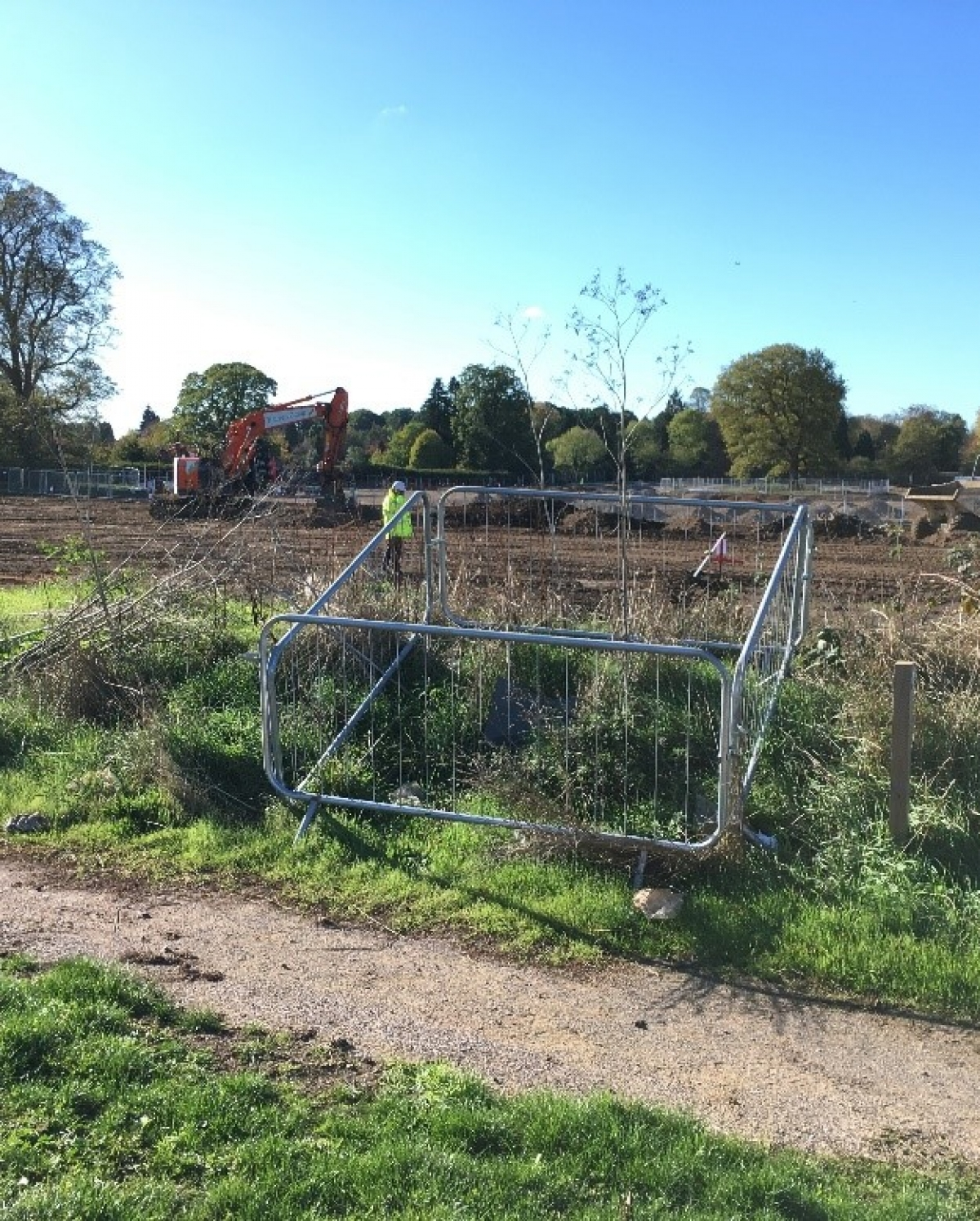 Landscape and Ecological Enhancement Plan: RBWM